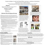Curation Techniques of Small-sized Natural History Specimens: A Collection of Microfossils.